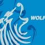 Stockport Metro Wolfpack